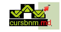 Curs BNM